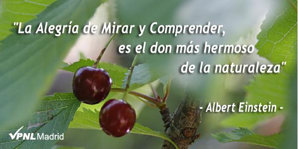 La Alegría de Mirar y Comprender es el don más hermoso de la naturaleza. Albert Einstein