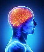 Neurolingüística