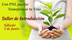 Introducción PNL Junio 2017